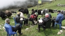 Makalu 2011 - PHZ