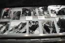 Wystawa fotografii górskiej Tadeusza Piotrowskiego-26
